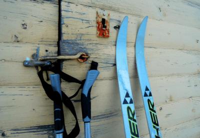 sklep narciarski w warszawie fischer sport mck