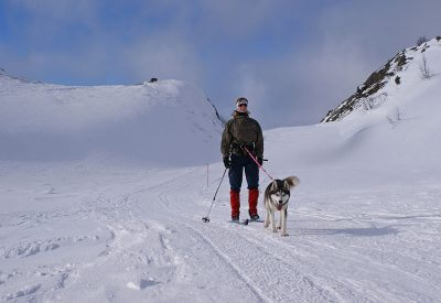 narty z psem skijoring