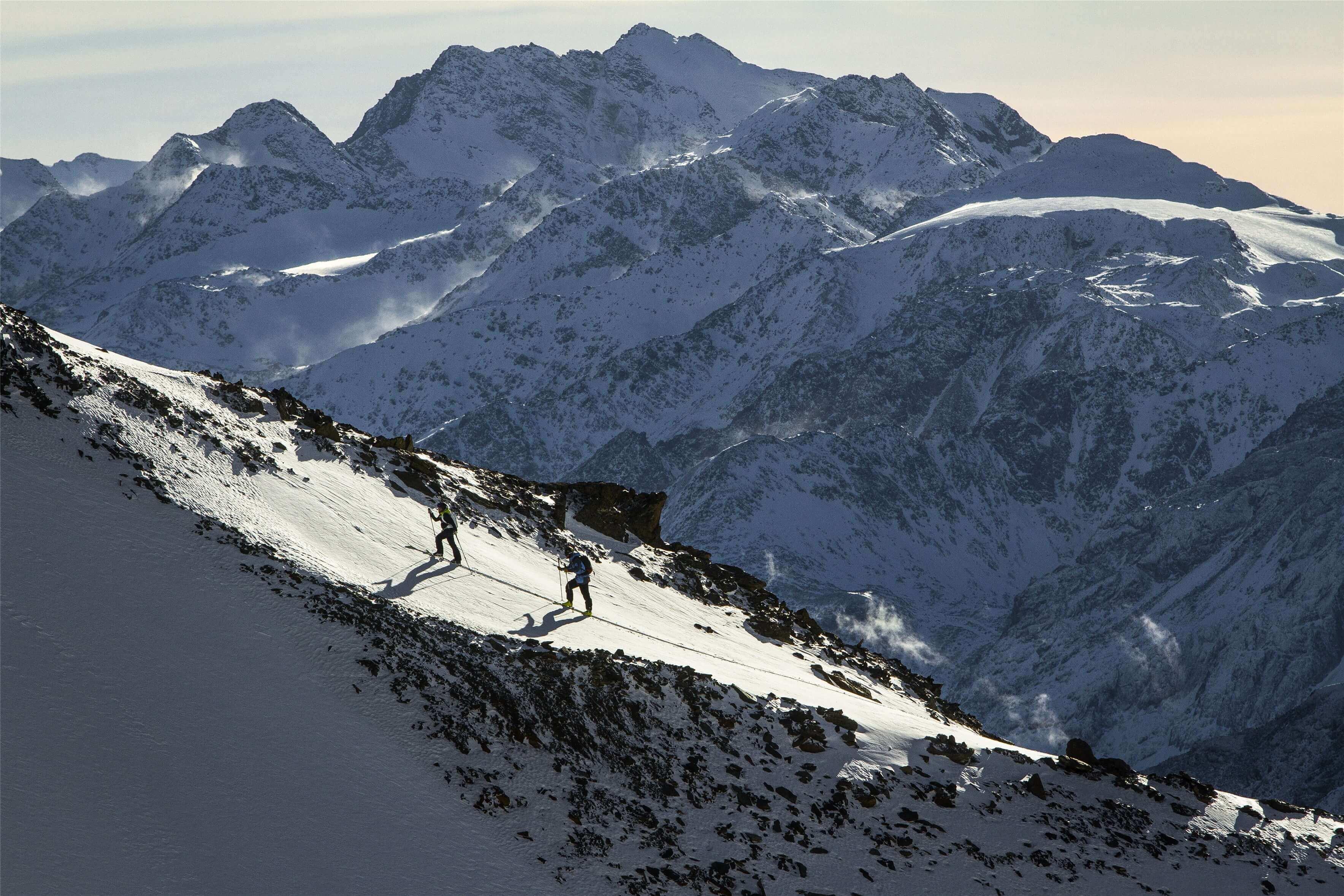 fischer skitour 2020