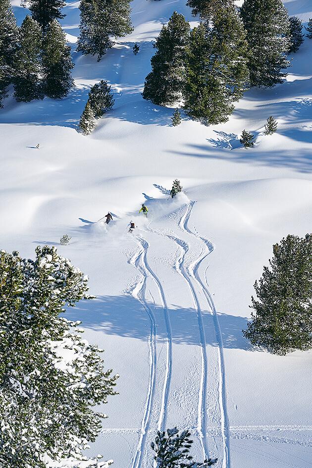 sława narciarze